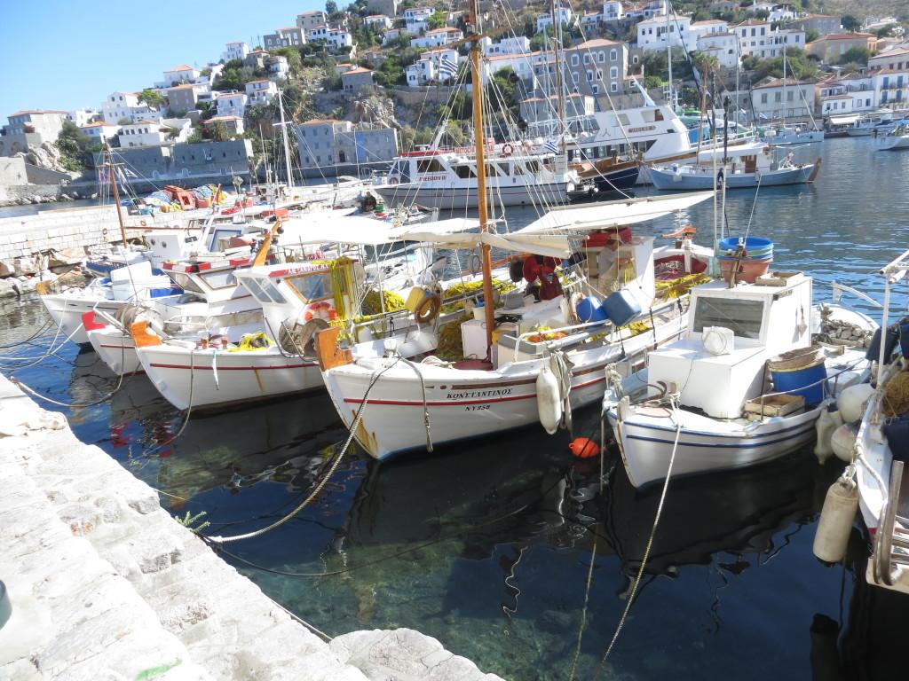 Hydran sataman pienveneitä.